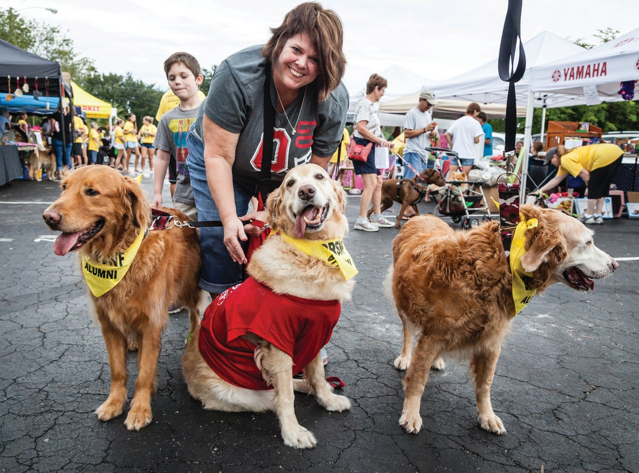 What to do where to go fort myers florida weekly golden retriever rescue of southwest florida hosts goldenfest ix from 10 am 2 pm march solutioingenieria Images