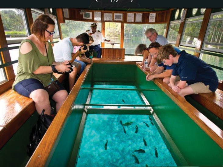 At Silver Springs, near Ocala, cruisers can view fish and other sea creatures from aboard a glass-bottom boat. Silver Springs is one of the largest artesian springs ever discovered.